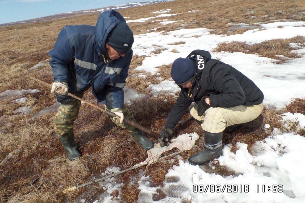 Отбор льда и мерзлого грунта СТС
