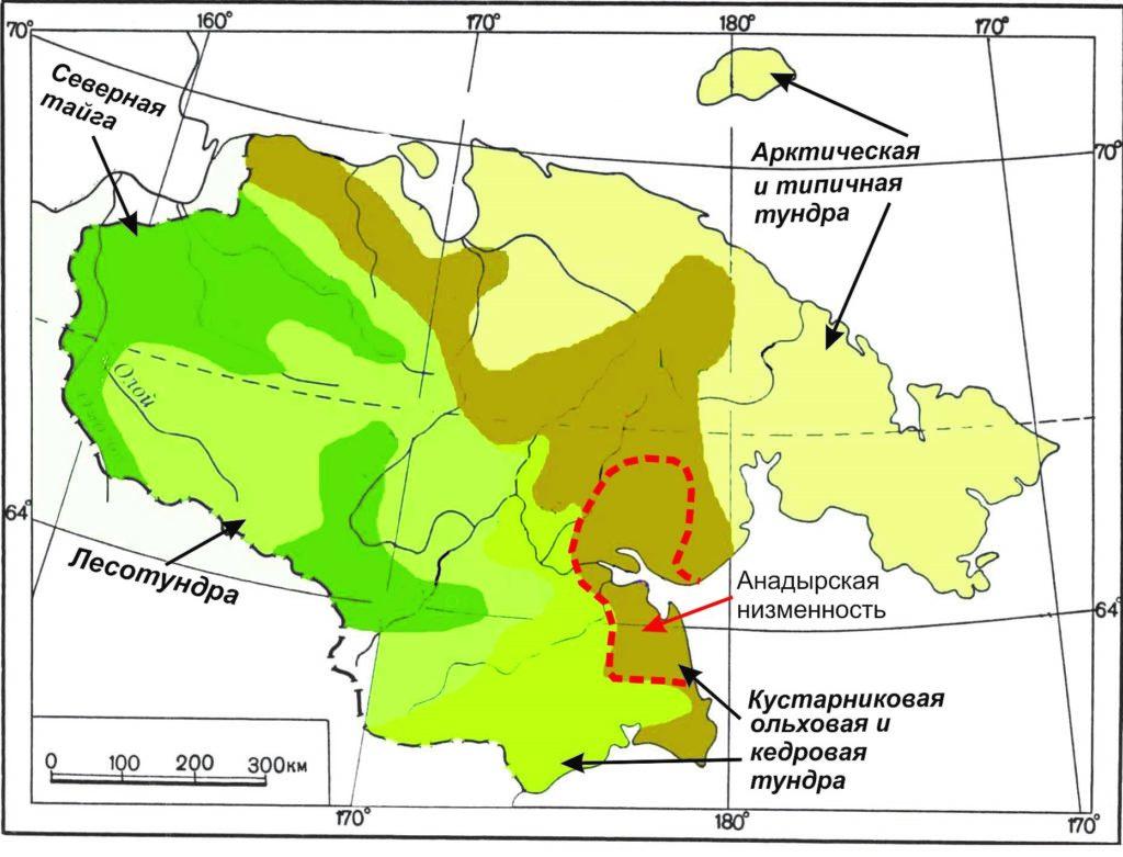 Анадырская низменность на схеме ландшафтного районирования Чукотки