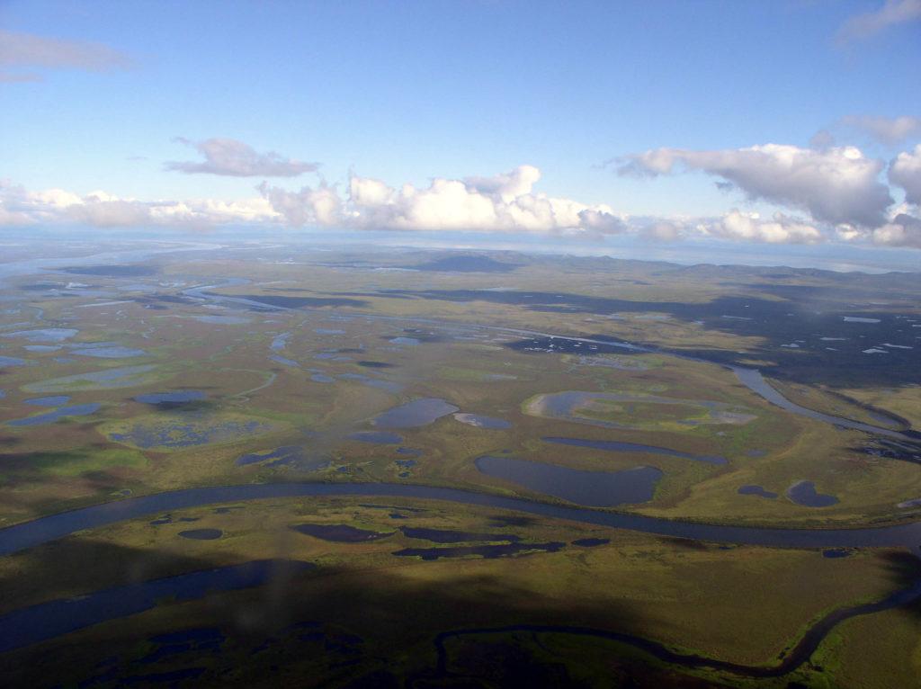 Анадырская низменность, озерно-болотные угодья