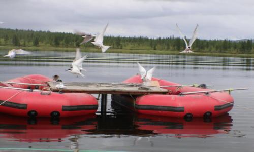 Буровая платформа. Озеро Чернок